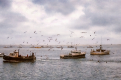 The Fishing Boats Are In