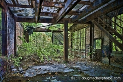 Abandoned And Overgrown