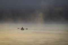 Foggy Morning Row