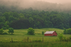 Red Barn In Morning Mist